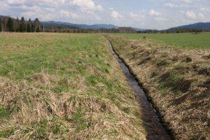 Narovnaný a zahloubený potok rychle odvádí vodu z krajiny