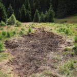 Výsledkem je terénní sníženina, která bude prostorem pro návrat mokřadních druhů rostlin.
