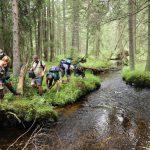 Slatinný potok někteří zvládli překonat skokem, jiní broděním.