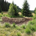 Ve sníženinách budeme monitorovat, jak se bude vyvíjet vegetační pokryv.