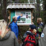 Informační tabule na rašeliništi Soosaare, foto Lukáš Linhart