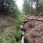 Kolíky určují polohu budoucích dřevěných hrázek na odvodňovacím kanálu.