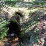 Betonový propustek pod lesní cestou nahradíme brodem vyskládaným z potočních kamenů.