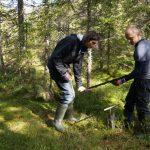 Die Torf-Beprobung mit Hilfe des Finnischen Profil-Bohrers ist eine Aufgabe für zwei Männer.