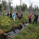 Návštěva revitalizovaného rašeliniště, aneb jak to bude vypadat po letech
