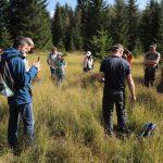 Jak vypadá minerotrofní rašeliniště?