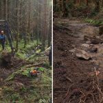 """Stožecká - vymělčení potoka pomocí """"pohřebených"""" hrázek jsme provedli i v odvodněných rašelinných a podmáčených smrčinách."""