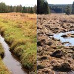 Nové Údolí - srovnávací fotografie potoka před a po revitalizaci