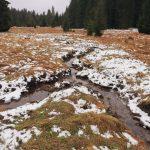 Nové Údolí - louky kolem Dolnokrásnohorské cesty přišly osvé potoky kvůli výstavbě železné opony, kterou lemovaly odvodňovací kanály. Ty jsou dnes již minulostí a potoky opět vedou původním směrem.